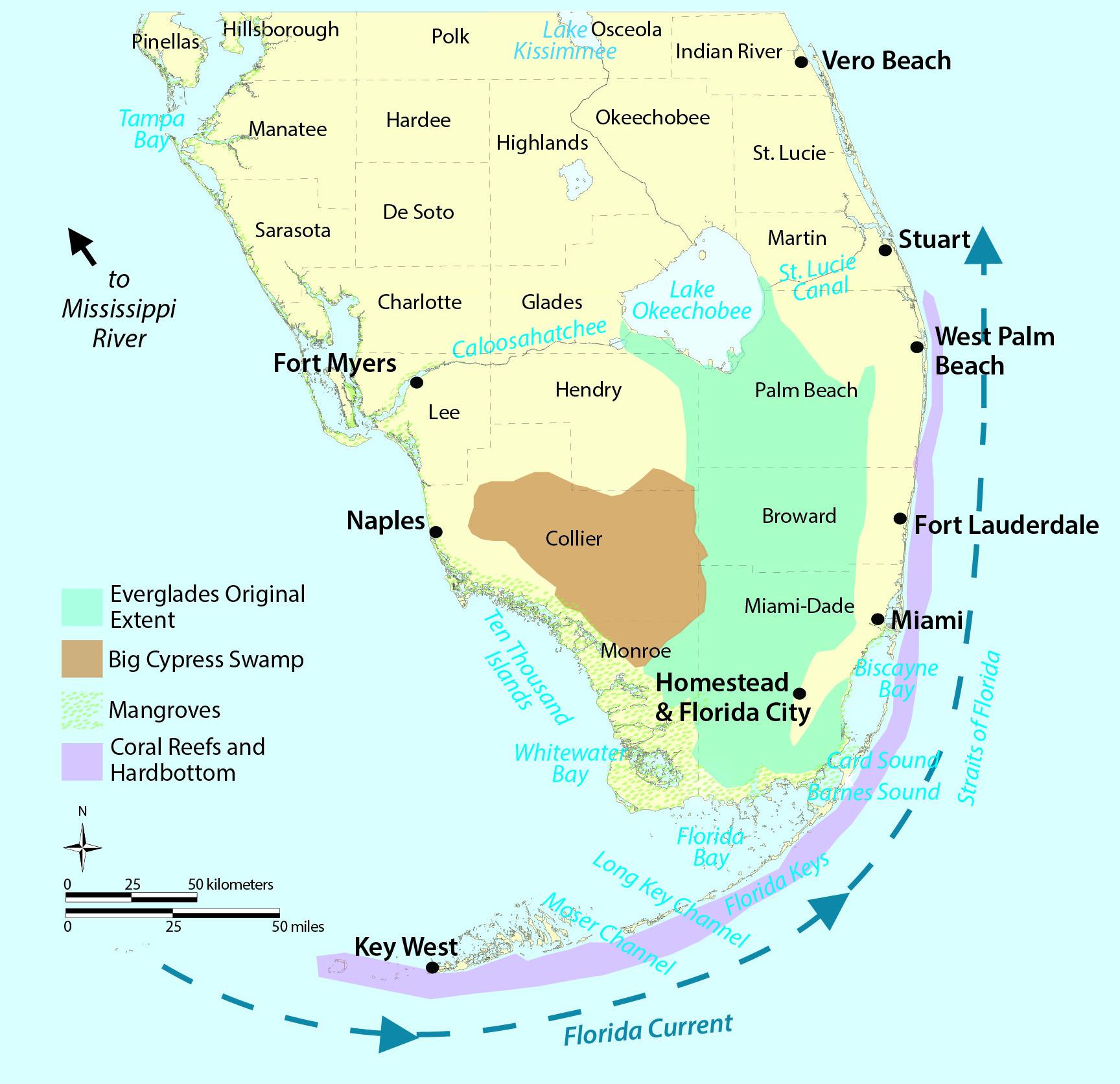 Ocean acidification in south florida aksik for Fishing jobs in florida