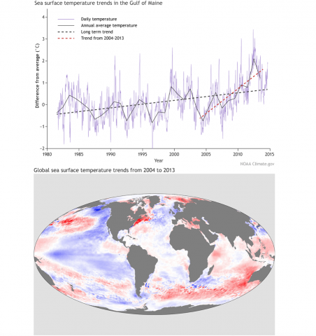 Change in Sea Surface Temperature